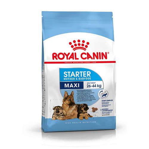 Royal Canin Maxi Starter - корм Роял Канін для цуценят великих порід, до 2 місяців